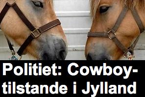 Cowboytilstande-Jylland-prXpress